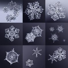 Beauty in the details -- Macro photography of snowflakes from viewer Marianna Armata from Pierrefonds, Quebec: