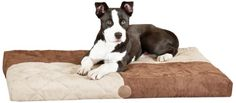 Special Offers - K&H Manufacturing Quilted Memory Dream Bed 3.5-Inch Medium  Choc/Tan 27-Inch by 37-Inch - In stock & Free Shipping. You can save more money! Check It (July 12 2016 at 01:38PM) >> http://dogcollarusa.net/kh-manufacturing-quilted-memory-dream-bed-3-5-inch-medium-choctan-27-inch-by-37-inch/