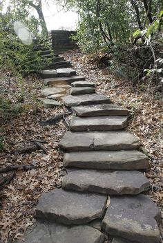 Stone stairs make such a cool addition to your back yard. We love what they did at the Fort Worth Botanical Gardens, and would love to help you create something similar at Minick Materials. Hillside Landscaping, Landscaping With Rocks, Landscaping Ideas, Hillside Garden, Outdoor Landscaping, Landscape Stairs, Landscape Design, Rock Steps, Garden Stairs