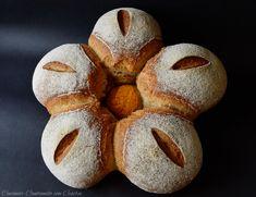 Ben tornati carissimi,oggi vi presento una ricetta dal sapore unico,pane con tumminia,grano antico siciliano. Ho provato ad usarlo in purezza ed ha un sapo