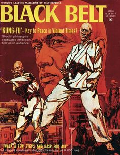 martial arts posters - Google Search