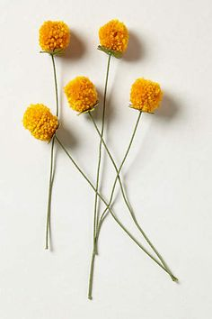 Pomdelion Bouquet - anthropologie. Could make these much less expensively than the$18 they cost.