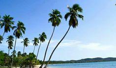 Balneario Boquerón Cabo Rojo, Puerto Rico El Balneario Boquerón es una de las playas más populares de Puerto Rico. Esta playa de numerosas palmeras, tiene una extensa costa cubierta de aguas tranquilas. Es una de las playas en donde mejor se puede apreciar el atardecer. Tiene una rampa que le permite a las personas impedidas entrar al agua. Hay baños, duchas, área de juegos para niños, cancha de baloncesto, un área para voleibol playero, un centro de actividades y facilidades para el…