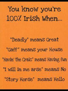 Being Irish means.....