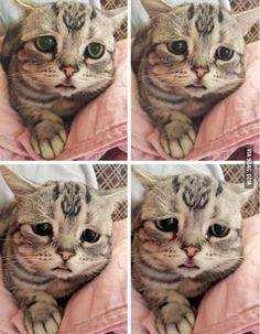 The sadness within - 9GAG