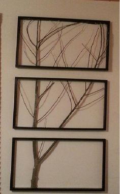 birch tree chat rooms Birch trees with autumn foliage, upper peninsula, michigan wall art, canvas prints, framed prints, wall peels.