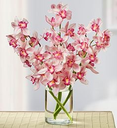 1800flowers orchids
