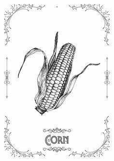 Folio illustration agency, London, UK   Swindler & Swindler - Ornamental ∙ Typography ∙ Line ∙ Ink ∙ Graphic ∙ Decorative - Illustrator
