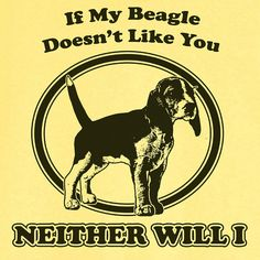 If My Beagle Doesn't Like You... Funny Novelty T Shirt Z12261 on Etsy, $18.99