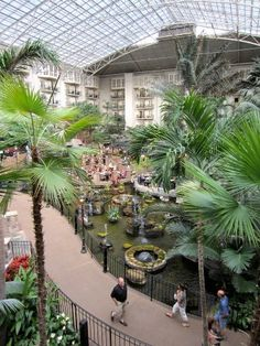 Opryland Hotel--a city unto itself