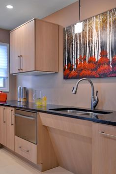 This ADA-compliant kitchen was custom-designed for accessibility and mobility in a wheelchair. Crisp black countertops provide contrast against sleek, light cabinets for a contemporary look, and fun artwork adds a vibrant splash of color.