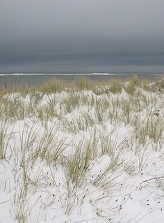 This photo looks so much like one of the beaches I've visited.  It brings wonderful memories.