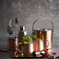 Copper Hammered Bar Tool Set #williamssonoma
