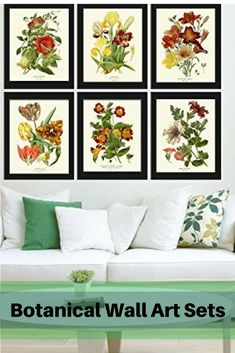 Botanical Wall Art Sets