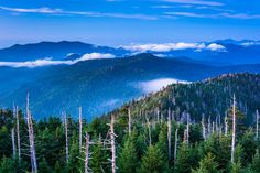 Fog over The Smoky Mountains