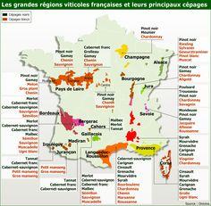 Carte des cépages de France