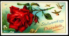 German Tradecard - Roses #4, via Flickr.