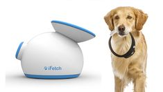 For anyone who loves technology as much as they love their dog, we have some must-see gadgets.