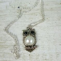 owl necklace NWOT necklace. Excellent condition. Never been worn. Very dainty chain. Please visit my closet. Jewelry Necklaces