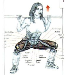 """ANTRENAMENT FETE – CRISTIAN DAVID """"YOUR PERSONAL TRAINER"""" Musculoskeletal System, Anatomy Reference, Personal Trainer, Biology, Trainers, Exercises, David, Workout, Sport"""