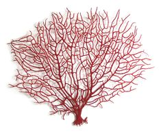 Red Coral Fan by Meredith Woolnough, machine embroidery on water soluble fabric