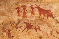 france cave paintings images - Google Search