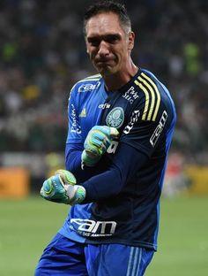 Fernando Prass Palmeiras Santos