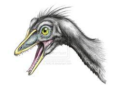 head of Archaeopteryx by ~MALvit on deviantART