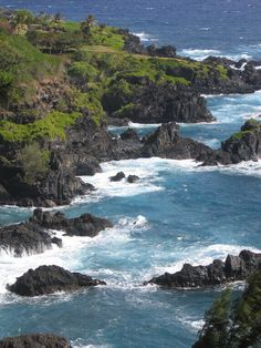 travel enthusiasts share tips and pictures about Maui