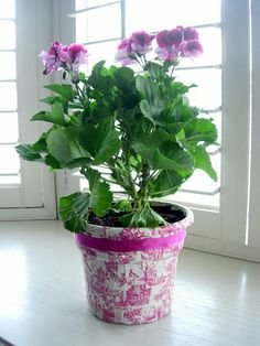 Make Mother's Day special. Transform an ugly plastic flower pot that plants come in for Mom. Quick and Easy - you may even want to keep it. {InMyOwnStyle.com}