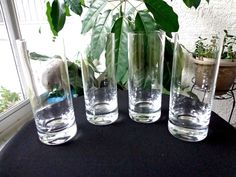 Set of 4 Tom Collins Highball Glasses #Unbranded