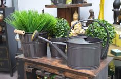 Compost, Canning, Home Canning, Composters, Conservation