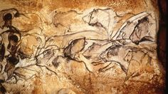 A Gallery of Cave Paintings from the Chauvet Cave as part of the Bradshaw Foundation France Rock Art Archive. The Chauvet Cave is one of the most famous prehistoric rock art sites in the world. Cave Drawings, Animal Drawings, Chauvet Cave, Paleolithic Art, Paleolithic Period, Art Antique, Painting Gallery, Art Sites, Old Paintings