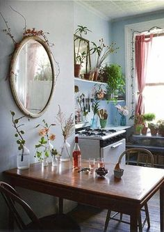 Home decor natural eclectic multiple vases and plants