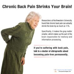 Chronic back pain can shrink your brain Benefits Of Chiropractic Care, Family Chiropractic, Spine Health, Information Processing, Tight Hip Flexors, Psoas Muscle, Northwestern University, Health Center, Ways To Lose Weight