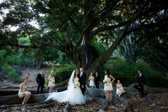 bridal party, fig tree, uneven bridal party pose, large bridal party pose, wedding photography posing Photos by Eileen Devereux Photography