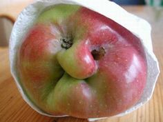 """How about THIS Granny Smith apple! Might her name really be """"Granny Smith? Fruit And Veg, Fruits And Vegetables, Funny Vegetables, Veggies, Things With Faces, Weird Things, Haha, Funny Fruit, Weird Fruit"""