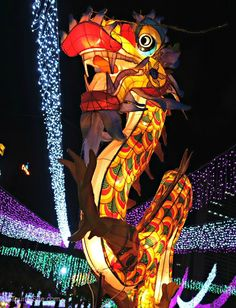 Hong Kong's Mid-Autumn Lantern Festival is held throughout the region, and Victoria Park's celebration is the biggest. Along with dragon lanterns, many others represent everything from flowers and toys to fairytale characters.