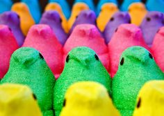 Marshmellow Treats, Marshmallow Peeps, All The Colors, Vibrant Colors, True Colors, Peep Show, Easter Candy, Easter Peeps, Easter Stuff