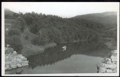 HÅKVIK i NARVIK. Lite vann med en robåt. Stpl. 1954 Håkvik er et tettsted i Narvik kommune i Nordland. Tettstedet har 734 innbyggere per 1. januar 2014, og ligger omtrent fem kilometer sør for Ankenes og ca. 13 kilometer sør for Narvik sentrum.