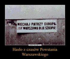 Hasło z czasów Powstania Warszawskiego – Warsaw Uprising, Jojo Bizzare Adventure, Life Humor, Have Time, Good To Know, Poland, Motivational Quotes, Funny, Historia