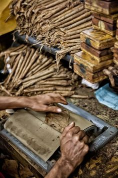 Tobacco in the Dominican