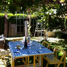 Vino and vineyards