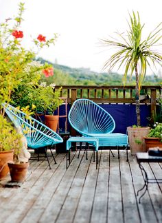 Terrace with pergola and garden in Mile End heights - Carole Schinck