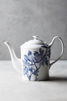 Caskata Arbor Teapot - Blue on white floral porcelain teapot form New England