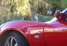 Lotus Elise S2 S (2006-2010) Detail