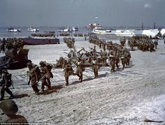 Juno Reinforcements - Canadian soldiers disembark at Juno Beach in Normandy, France during the D-Day invasion on June and Archives Canada/Wikimedia Commons History Online, World History, World War Ii, Canadian Army, Canadian Soldiers, Canadian History, British Army, American History, Native American