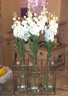 Melanee Carmella Packard: Lovely use of this jar holder. The flowers look so pretty!