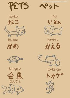 pets Japanese
