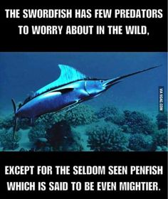 I see what you did there... - 9GAG